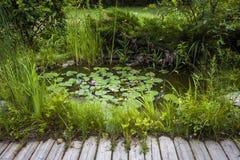Μικρή λίμνη εξωραϊσμού Στοκ φωτογραφίες με δικαίωμα ελεύθερης χρήσης