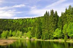 Μικρή λίμνη Arber Στοκ Φωτογραφίες