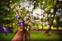 Μικρή ανθοδέσμη των πρόσφατα κομμένων wildflowers Στοκ Εικόνα