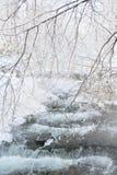 Μικρή γέφυρα πέρα από το ρεύμα στο χειμερινό δάσος Στοκ φωτογραφία με δικαίωμα ελεύθερης χρήσης