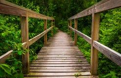 Μικρή γέφυρα σε ένα ίχνος στο κρατικό πάρκο Codorus Στοκ φωτογραφία με δικαίωμα ελεύθερης χρήσης