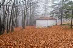 Μικρή εκκλησία στα ξύλα το φθινόπωρο στοκ εικόνες