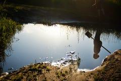 Μικρή ζωή - φύση Στοκ εικόνα με δικαίωμα ελεύθερης χρήσης