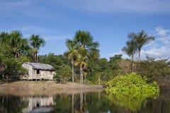 Μικρή καλύβα στον ποταμό του Αμαζονίου Στοκ Εικόνες