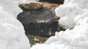 Μικρή κοίτη Στοκ εικόνες με δικαίωμα ελεύθερης χρήσης
