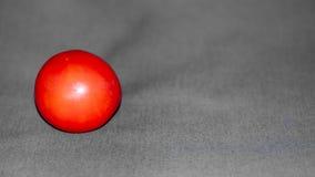 Μικρή κόκκινη ντομάτα που τίθεται ενάντια σε ένα σκηνικό του μέσου γκρίζου υφάσματος στοκ εικόνες