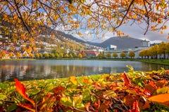 Μικρή λίμνη της Λίλλης Lungegardsvannet στο Μπέργκεν Στοκ εικόνες με δικαίωμα ελεύθερης χρήσης