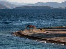 Μικρή παραλία παραλιών με έναν πάγκο και parasols Στοκ Φωτογραφίες