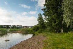 Μικρή παραλία με τους πρασινολαίμες Στοκ Εικόνες