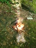 Μικρή πυρκαγιά στο ξύλο Στοκ Φωτογραφίες