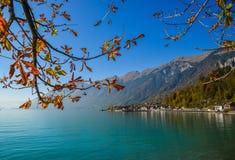 Μικρή πόλη από την πλευρά λιμνών Brienz, Ελβετία στοκ φωτογραφία