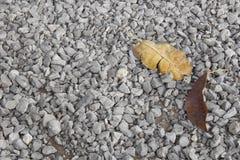 Μικρή χαλίκια ή πέτρα και ξηρό φύλλο για το υπόβαθρο Στοκ εικόνες με δικαίωμα ελεύθερης χρήσης
