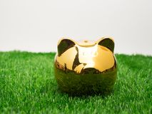 Μικρή piggy τράπεζα πίσω από ένα μικρό μπάλωμα της φρέσκιας χλόης Χρυσός piggy Στοκ Εικόνες