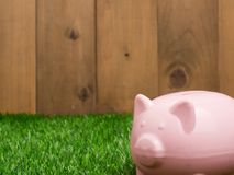 Μικρή piggy τράπεζα πίσω από ένα μικρό μπάλωμα της φρέσκιας χλόης Στοκ εικόνες με δικαίωμα ελεύθερης χρήσης