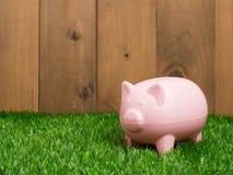Μικρή piggy τράπεζα πίσω από ένα μικρό μπάλωμα της φρέσκιας χλόης Στοκ Φωτογραφία