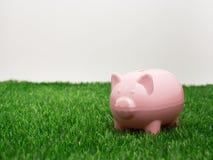 Μικρή piggy τράπεζα πίσω από ένα μικρό μπάλωμα της φρέσκιας χλόης Στοκ εικόνα με δικαίωμα ελεύθερης χρήσης