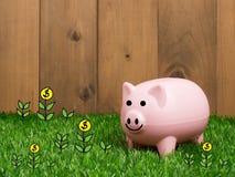 Μικρή piggy τράπεζα πίσω από ένα μικρό μπάλωμα της φρέσκιας χλόης Στοκ Φωτογραφίες