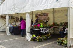 Μικροί έμποροι και πελάτες του Μπέλφαστ Βόρεια Ιρλανδία στις σκηνές τους στο φεστιβάλ ανοίξεων του Μπέλφαστ ως gri εμπορικών συνα Στοκ εικόνα με δικαίωμα ελεύθερης χρήσης