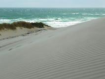 Μικροί αμμόλοφοι άμμου στην παραλία στοκ εικόνες