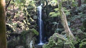Μικροί καταρράκτες στο δάσος και βουνό στον κήπο δαμάσκηνων Naritasan