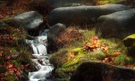 Μικροί καταρράκτης και λαμπτήρας στο δάσος φθινοπώρου Στοκ εικόνα με δικαίωμα ελεύθερης χρήσης