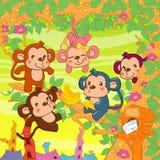 Μικροί πίθηκοι Στοκ φωτογραφία με δικαίωμα ελεύθερης χρήσης