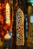 Μικροσκοπικά γοτθικά παράθυρα από το γυαλί, στοιχεία διακοσμήσεων Στοκ Εικόνες