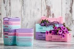 Μικροσκοπικά ζωηρόχρωμα πλαστικά καλάθια για την οικιακή χρήση Στοκ Εικόνες
