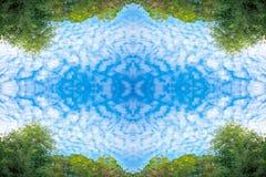 Μικροσκοπικά σύννεφα και πολύβλαστα πράσινα δέντρα σημύδων φυλλώματος και δάσος μπλε ουρανού την άνοιξη στην προοπτική σύστασης υ Στοκ Εικόνες