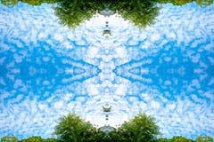 Μικροσκοπικά σύννεφα και πολύβλαστα πράσινα δέντρα σημύδων φυλλώματος και δάσος μπλε ουρανού την άνοιξη στην προοπτική σύστασης υ στοκ εικόνα