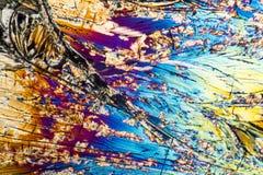 Μικροσκοπικά Xylose κρύσταλλα Στοκ φωτογραφίες με δικαίωμα ελεύθερης χρήσης