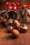 Μικροσκοπικές champignons μανιταριών μωρών και ντομάτες μωρών κερασιών Στοκ εικόνα με δικαίωμα ελεύθερης χρήσης