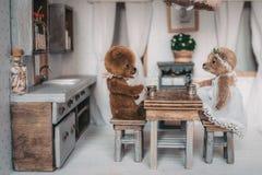 Μικροσκοπικές teddy αρκούδες στοκ φωτογραφία με δικαίωμα ελεύθερης χρήσης