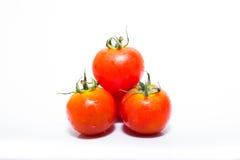 Μικροσκοπική φρέσκια ντομάτα Στοκ φωτογραφία με δικαίωμα ελεύθερης χρήσης