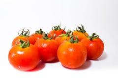 Μικροσκοπική φρέσκια ντομάτα Στοκ Φωτογραφία
