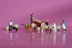 Μικροσκοπικοί εργαζόμενοι που εκτελούν τις οδοντικές διαδικασίες Οδοντικό γραφείο AR Στοκ Εικόνα