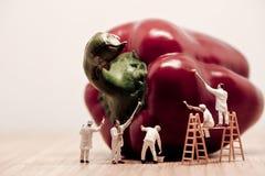 Μικροσκοπικοί ζωγράφοι που χρωματίζουν το πιπέρι κουδουνιών Τονισμένη τρύγος φωτογραφία Στοκ Εικόνες