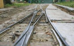 Μικροσκοπικός σιδηρόδρομος στο πάρκο Στοκ Εικόνες