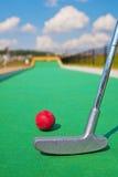 Μικροσκοπικό γκολφ Στοκ φωτογραφία με δικαίωμα ελεύθερης χρήσης