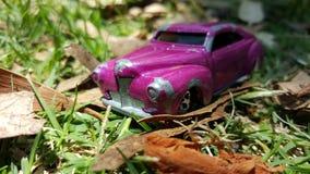 Μικροσκοπικό ιώδες αυτοκίνητο παιχνιδιών στο πάρκο στοκ εικόνες