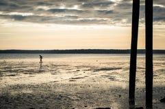 Μικροσκοπικό πρόσωπο που περπατά στην παραλία at low tide αμέσως πριν από το ηλιοβασίλεμα Στοκ φωτογραφίες με δικαίωμα ελεύθερης χρήσης