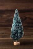 Μικροσκοπικό χριστουγεννιάτικο δέντρο Στοκ Εικόνες