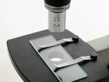 μικροσκόπιο κάτω στοκ εικόνες