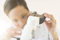Μικροσκόπιο ρύθμισης επιστημόνων στο εργαστήριο στοκ φωτογραφία με δικαίωμα ελεύθερης χρήσης