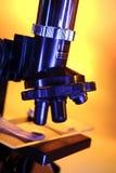 μικροσκόπιο Στοκ φωτογραφίες με δικαίωμα ελεύθερης χρήσης