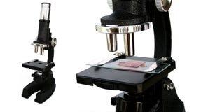 μικροσκόπιο Στοκ Φωτογραφίες