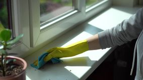 Μικροδουλειές - καθαρίζοντας σκόνη γυναικών από τη στρωματοειδή φλέβα παραθύρων απόθεμα βίντεο
