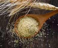 Μικρόβιο σίτου στο ξύλινο κουτάλι στοκ εικόνα με δικαίωμα ελεύθερης χρήσης
