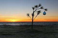 Μικρός εορτασμός Χριστουγέννων Στοκ φωτογραφία με δικαίωμα ελεύθερης χρήσης