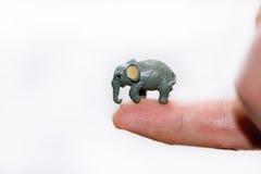 Μικρός διακοσμητικός ελέφαντας στο δάχτυλο στοκ εικόνα